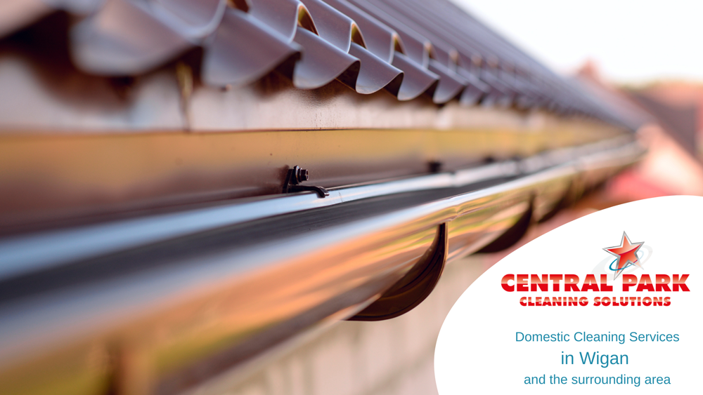 Central Park Cleaning Solutions logo with guttering photo